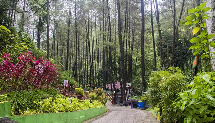 Keindahan Srambang Park, Ngawi