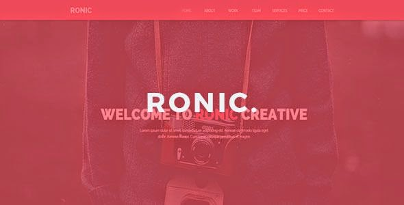 Best Creative Muse Template