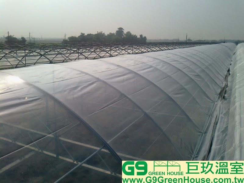 25.圓鋸鋼骨加強型溫室結構彎弓基礎管開始覆蓋結構農膜初步完成外觀