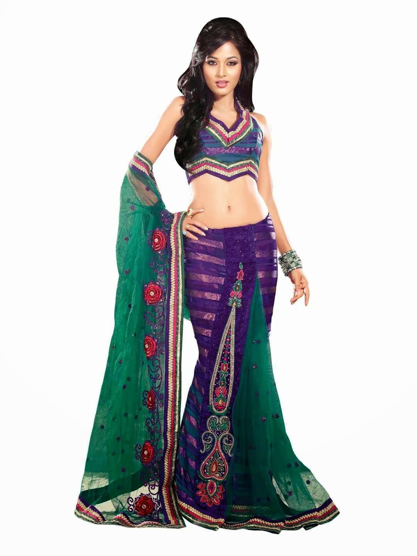 Indian Desi Females In Saree Full Hd  Photo Chocolate-5644