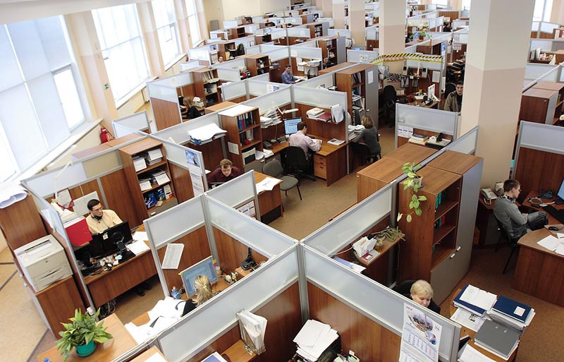 Contentment in the Workplace: Make Employees Happy and Respectful
