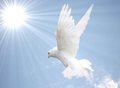 Hoje pedi a Deus, Mensagens de Feliz Aniversário, Mensagem de Aniversário