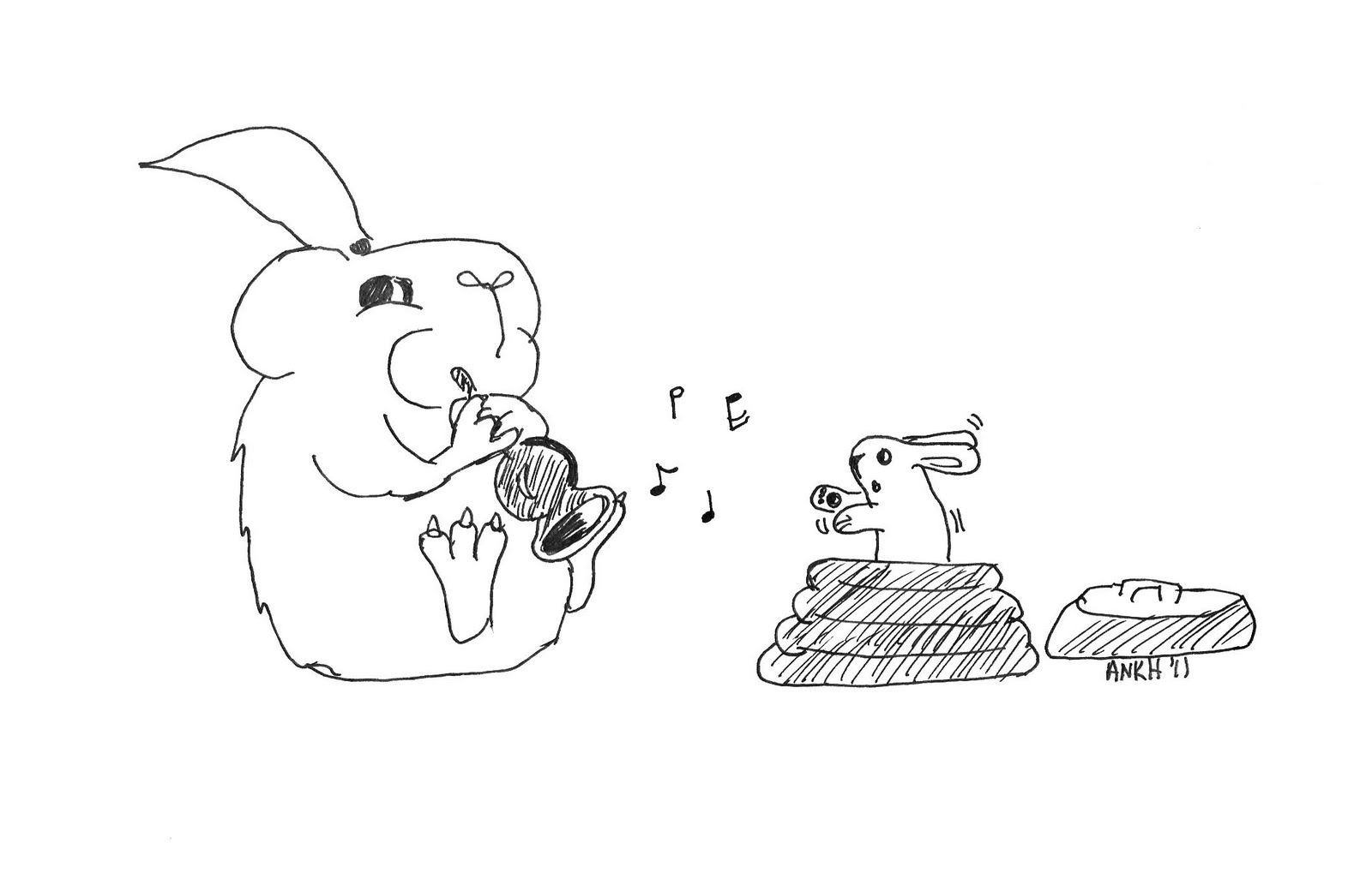 The Secret Life Of Guinea Pigs February