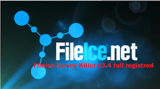 download Fileice Survey remover full