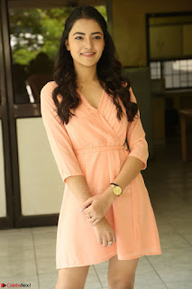 Rukshar Mir in a Peachy Deep Neck Short Dress 126.JPG