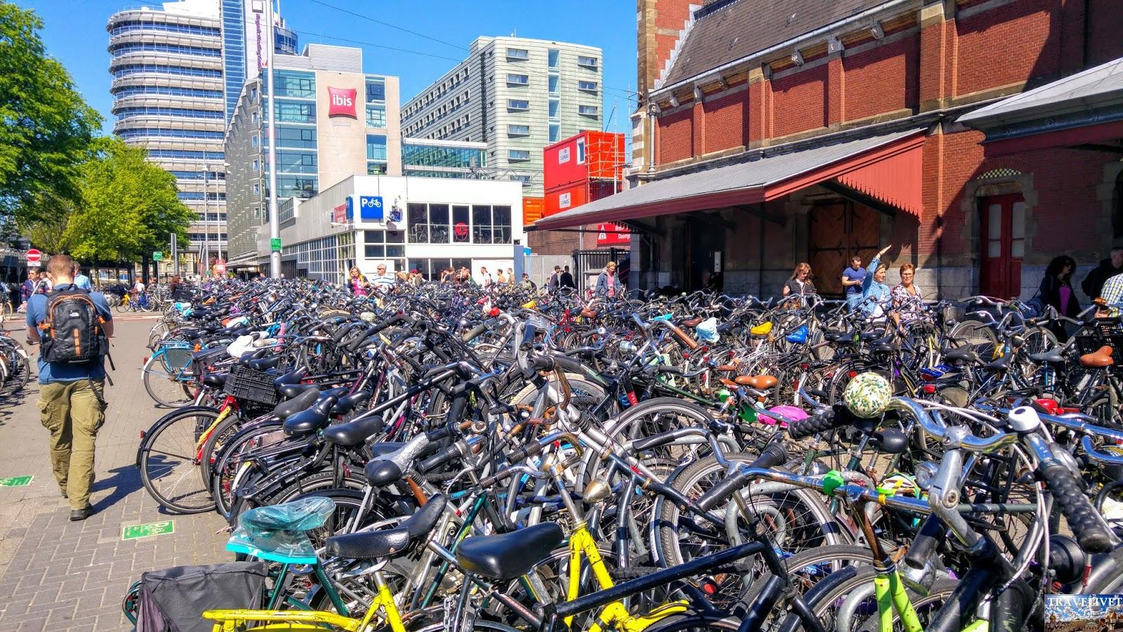 Pays Bas : Amsterdam la ville du vélo