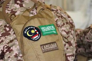 Pasukan Militer Malaysia