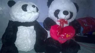 Marita's Panda Doll