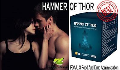 TESTIMONI HAMMER OF THOR