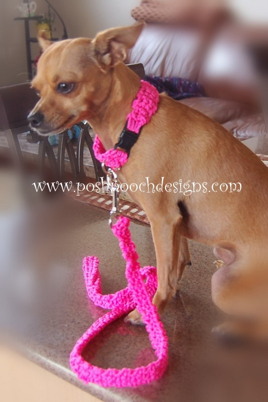 Posh Pooch Designs Dog Clothes Cord Dog Collar And Leash Free