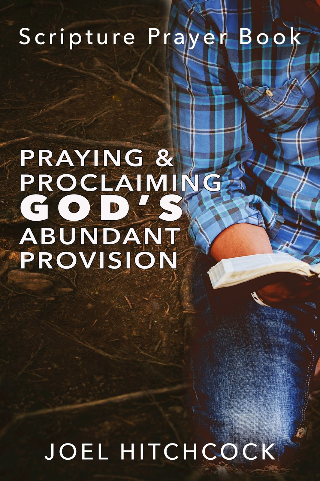 "Click the picture for Joel's book, ""Praying and Proclaiming God's Abundant Provision"""