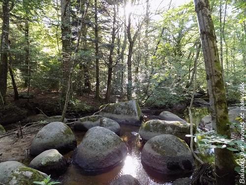 La rivière de rochers