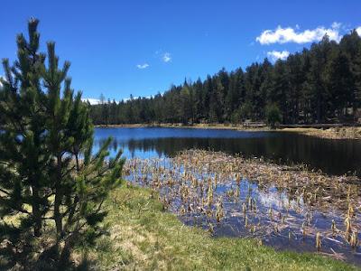 Lac de Calvet