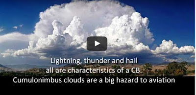 Physicists presently made their own clouds using a chemical-grown in trees