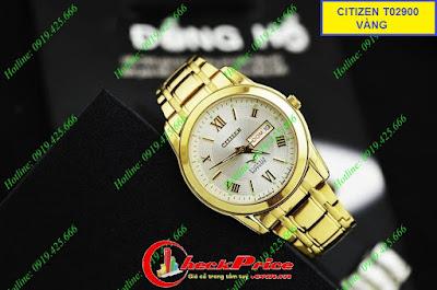 Đồng hồ nam Citizen Citi T02900