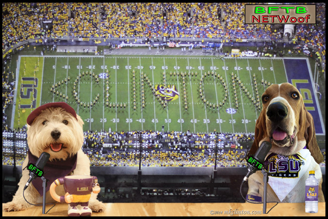 Pierre Westie and Bentley Basset Hound in LSU garb with LSU band spelling out CLINTON on the field