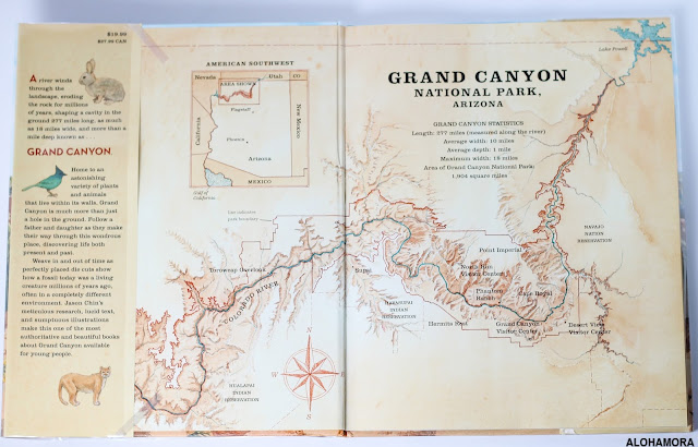 Grand Canyon by Jason Chin won a Caldecott Honor book in 2018. This illustrated nonfiction book is fantastic.  There is a ton of information including ecology, history, geology, animals, biology, maps, and so much more.  Fascinating book 3rd, 4th, 5th, 6th, and 7th graders will enjoy.  Teachers and those living in AZ will enjoy it immenseley.  Fantastic book! Check it out! AZ Grand Canyon, History. Alohamora Open a Book, Alohamoraopenabook http://alohamoraopenabook.blogspot.com/
