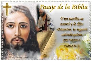 Resultado de imagen para Mateo 8,19