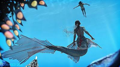 Aguja Undersea Environment