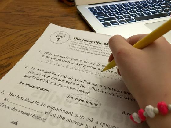 Homeschool science workbook