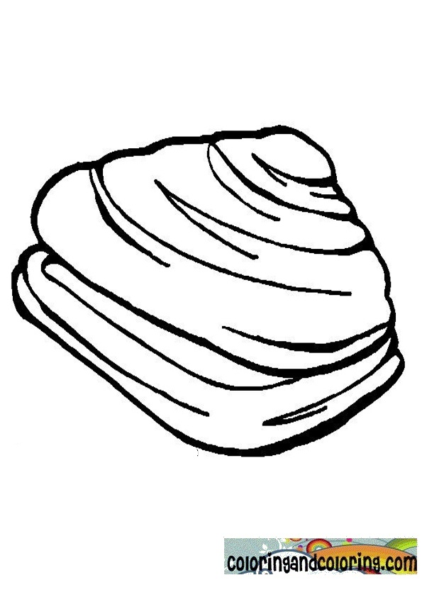 Open clam coloring coloring pages for Clam coloring page
