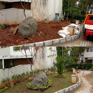 Jasa Bikin Taman Minimalis Bogor | Pasang Tanam Rumput Gajah Mini | Tukang Taman Murah Dibogor