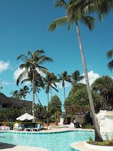 Barbados Almond Beach Resort Susannah Zabelle