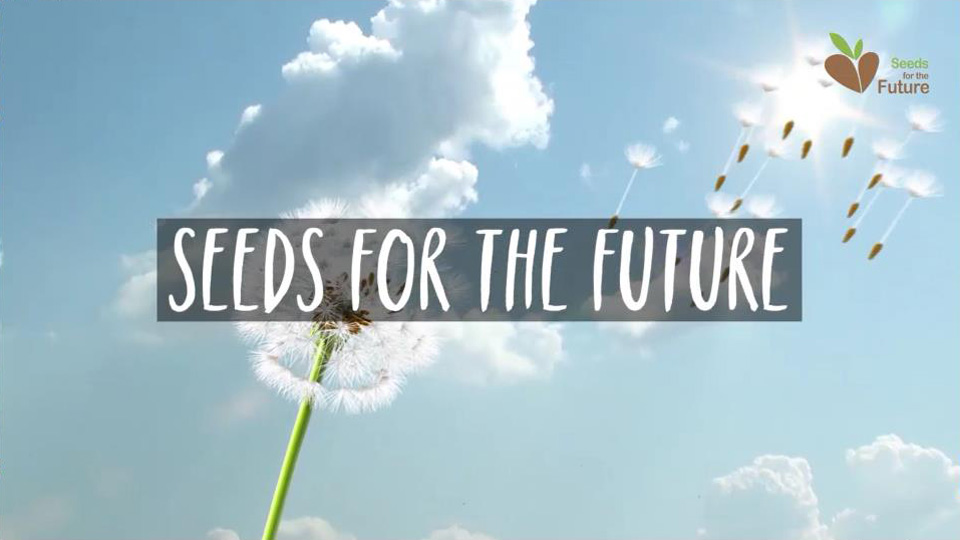 "Huawei abre la convocatoria: ""Seeds for the future"" 2018"