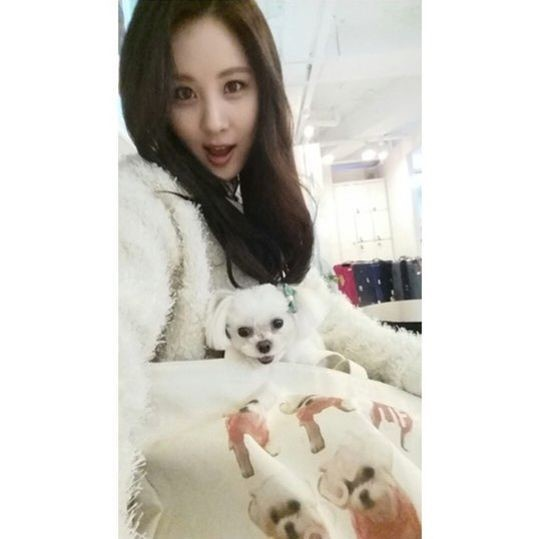 Girls Generation pet Instagram Taeyeon Sunny Tiffany Hyoyeon Yuri Sooyoung Yoona Seohyun poodle Maltese Yorkshire dog cat Pomeranian K-Pop enjoy korea hui