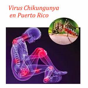 Primer Caso de Chikungunya