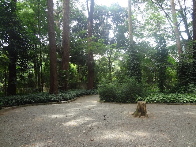 Parque dos Eucaliptos em São Paulo