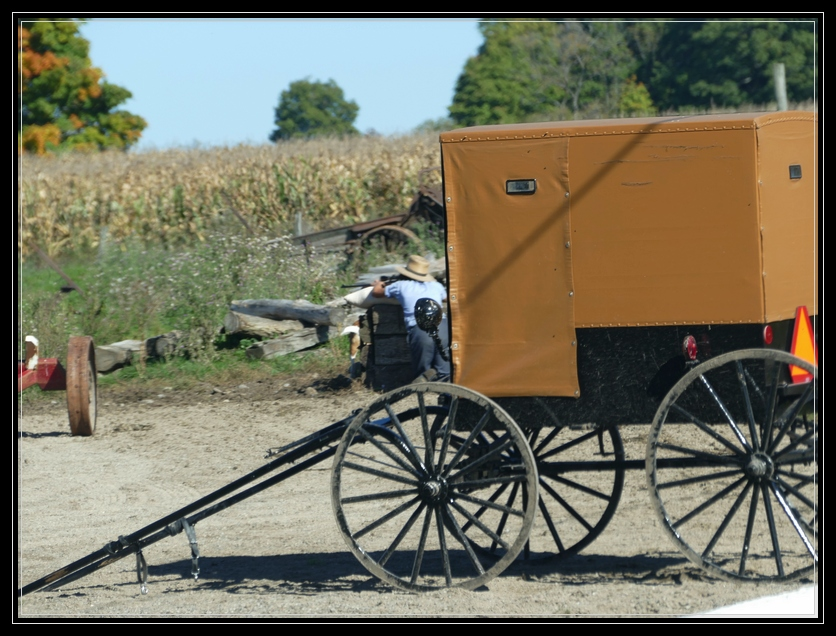 Amish of Montgomery County NY