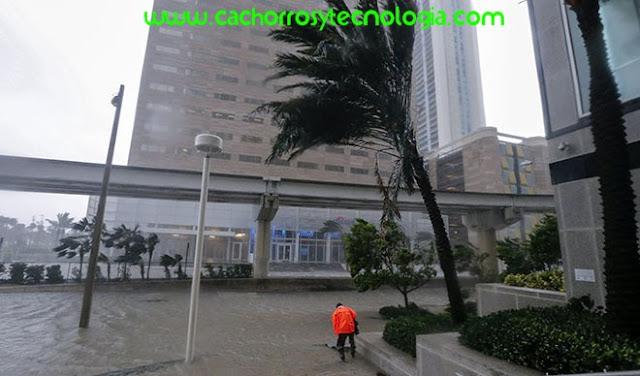 Hurricane Irma 2017 Live Fort Lauderdale Florida 1
