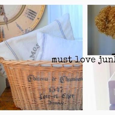 Must Love Junk Blog Feature