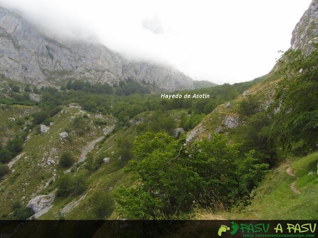 Camino al Hayedo de Asotín