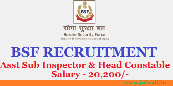 BSF Stenographer & Head Constable, border security force Jobs in india, BSF Jobs