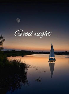 Top Good night pics with Sweet Dreams HD download wallpaper images photo gallery