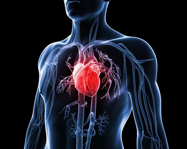 Jangan Sampai Salah, Serangan Jantung atau Henti Jantung
