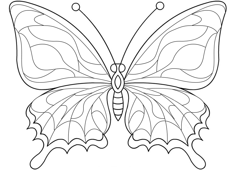 раскраска, бабочка, трафарет