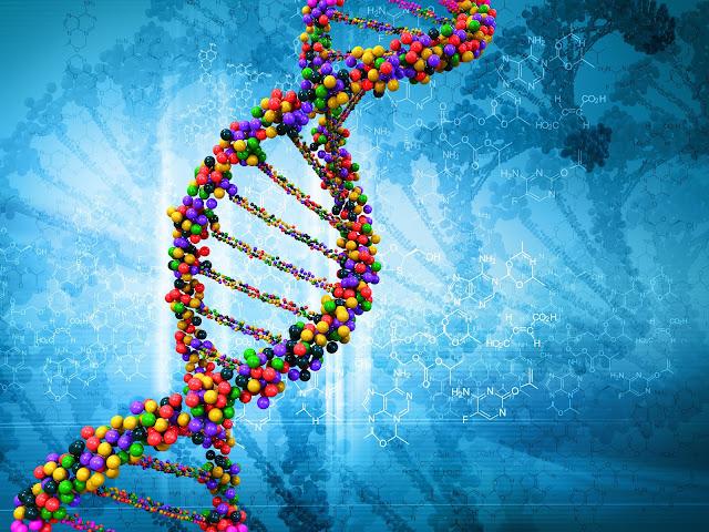 Apa Itu DNA?