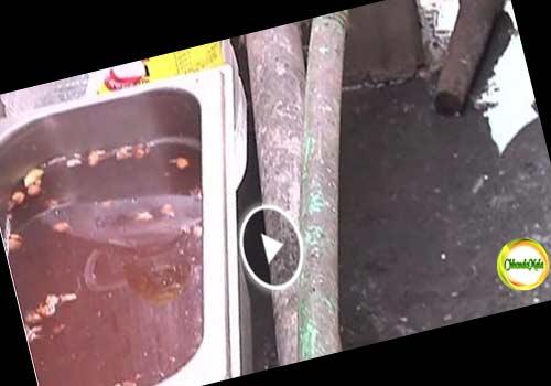 পপুলার হাসপাতালের রোগীর খাদ্য তৈরি হচ্ছে ড্রেনের ওপরে Image