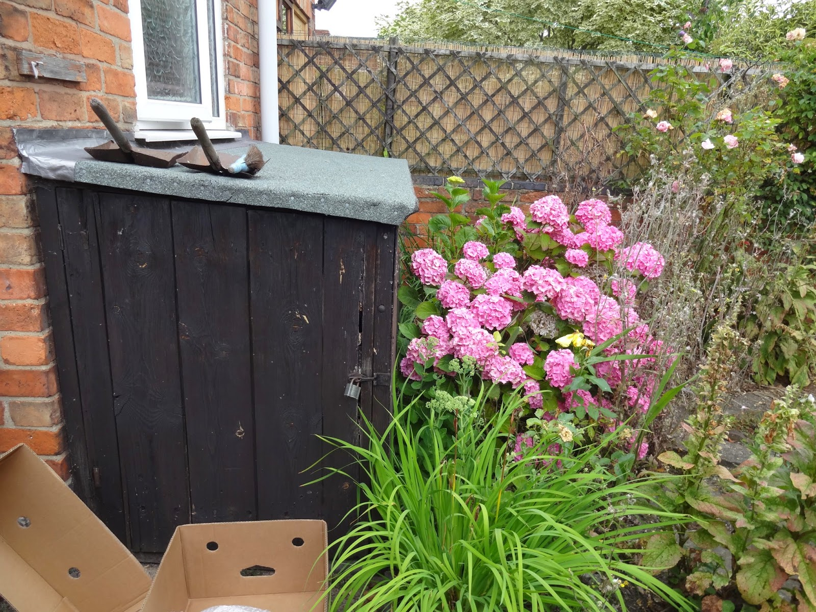 small bike shed in garden