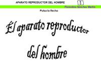 https://cplosangeles.educarex.es/web/edilim/tercer_ciclo/cmedio/las_funciones_vitales/la_funcion_de_reproduccion/el_aparato_reproductor_del_hombre/el_aparato_reproductor_del_hombre.html