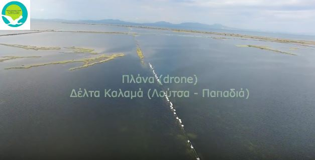 Πλάνα με drone από Δέλτα Καλαμά (Λούτσα - Παπαδιά)