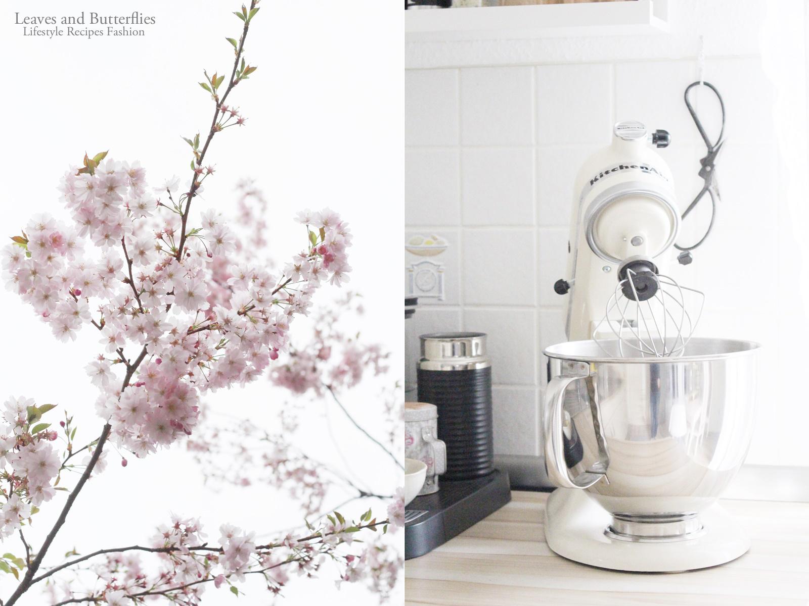 rosa bl tenzauber und der weltbeste rhabarber himbeer kuchen mit wei er schokolade. Black Bedroom Furniture Sets. Home Design Ideas