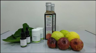 Source: MESTECC. Fig-based products.