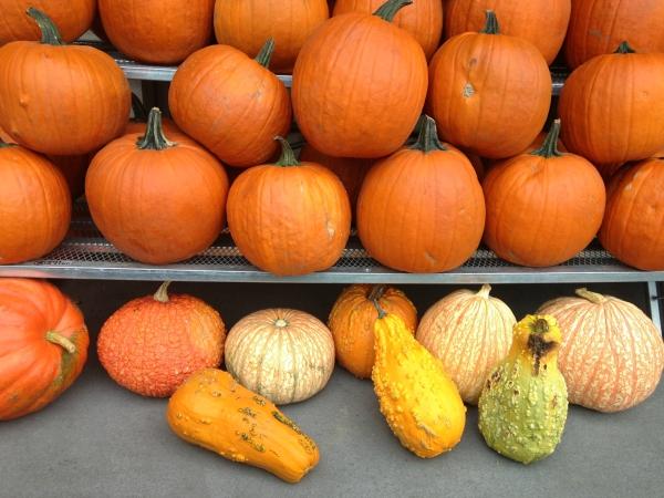 A Welcoming Thanksgiving Carte Du Jour — Vegan, Gluten-Free, Nutrient Allergy Friendly Options