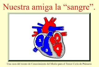 http://www.ceiploreto.es/sugerencias/sanwalabonso/ct_sangre/caza_sangre.html