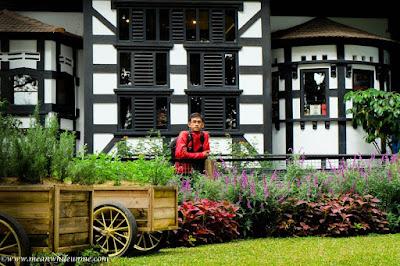 Ngenyot Ngedot Ngempeng Susu di Farmhouse Susu Lembang, Bandung taman bunga penuh warna