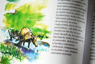 Wnętrze książki, ilustracja przedstawiająca bawoła